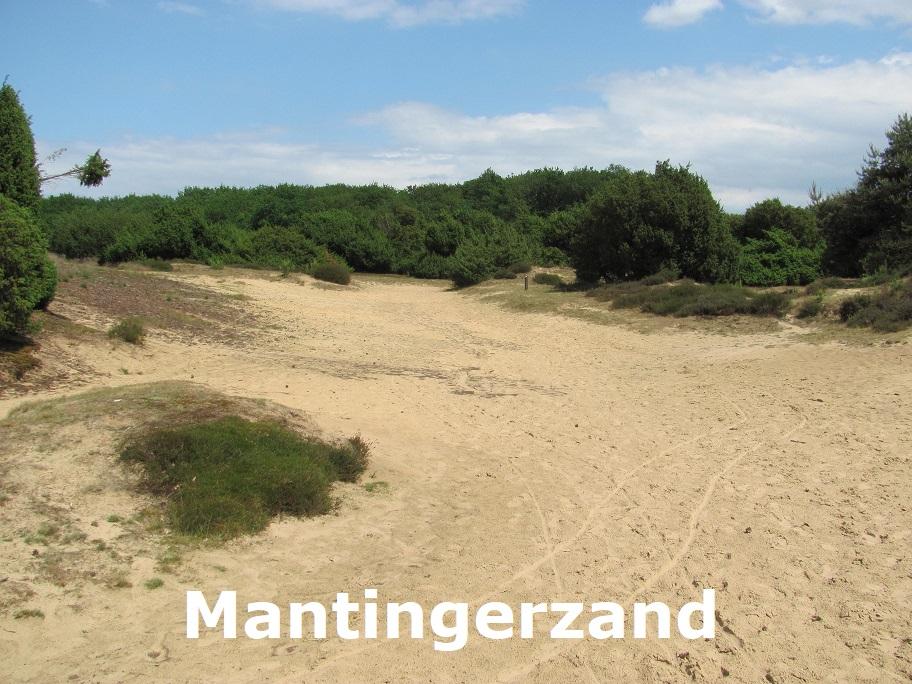 Mantingerzand