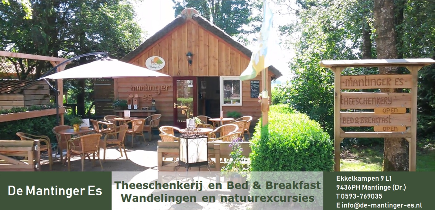 Theeschenkerij en Bed & Breakfast